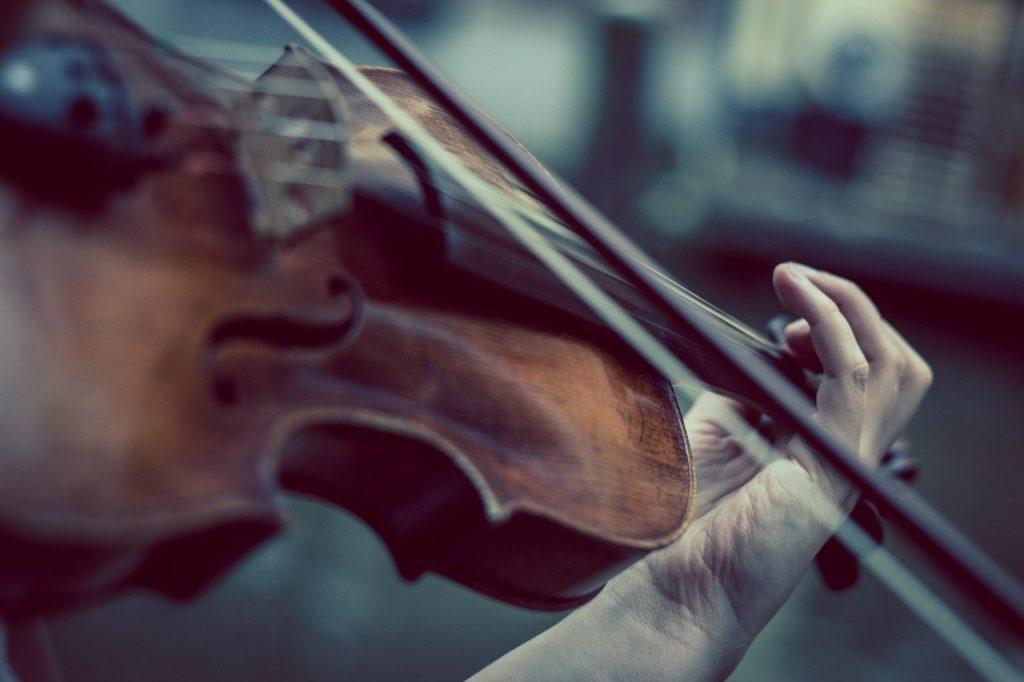 violin, violinist, music-374096.jpg
